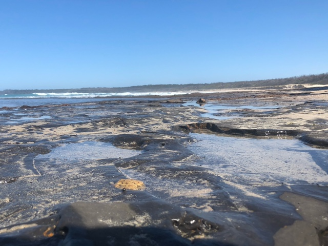 "Started ""100 Beaches + Take-3 Challenge"" & bushwalk recommendation"